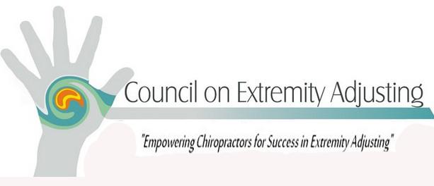 ExtremityCouncillogo